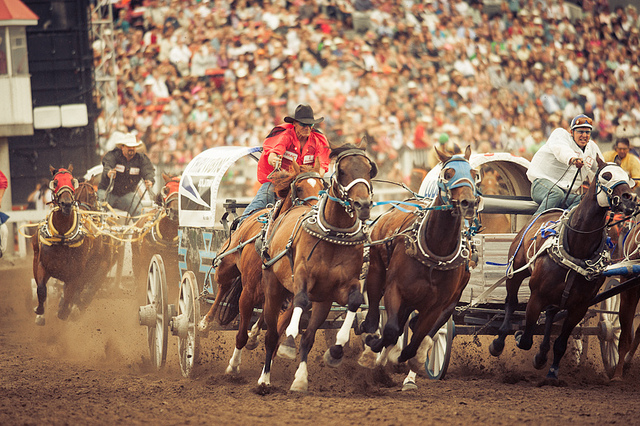Calgary Stampede Enters Consulting Partnership With The